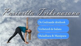 Step by Step   Parivrtta Trikonasana, Gedraaide driehoek