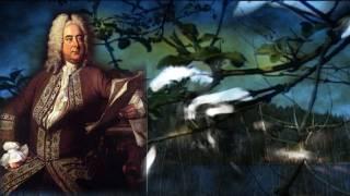 Der Messias ´´Halleluja´´ (Georg Friedrich Händel) The Messiah / Handel / Classical Music