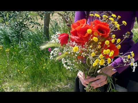 Quel 39 mazzolin di fiori lidija percan youtube - Immagini di fiori tedeschi ...