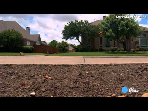 Xeriscaping nixed by homeowner's HOA