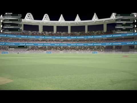 PS4| Don Bradman Cricket 17| Pak V NZ| Match Winning Partnership| S.Ahmed & I.Wasim
