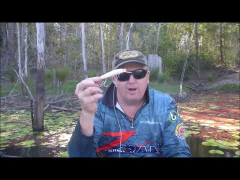 Bagley Rumble B 11 - Surface Twitch and Pause Technique for Barramundi
