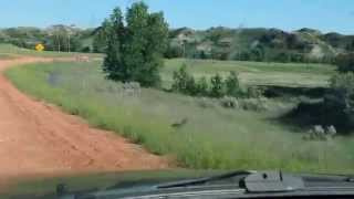 Driving in North Dakota: Contentment