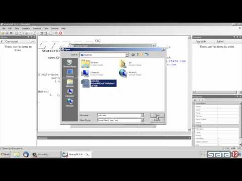 Import Excel® data into Stata®