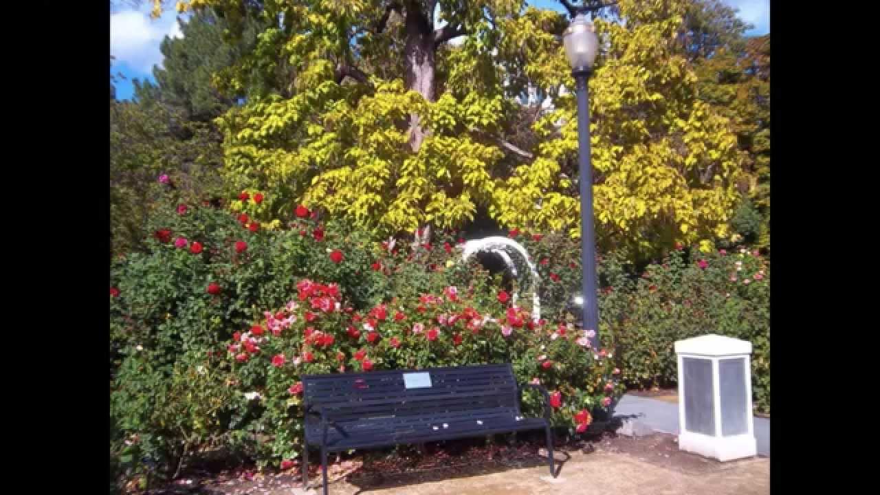 Sacramento Capitol Park