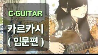 [0년차] 클래식 기타 카르카ᄉ…