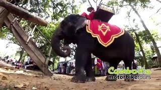 WELCOME TO CAMBODIA MOTORBIKE TOURS Asian dirt ride adventures!