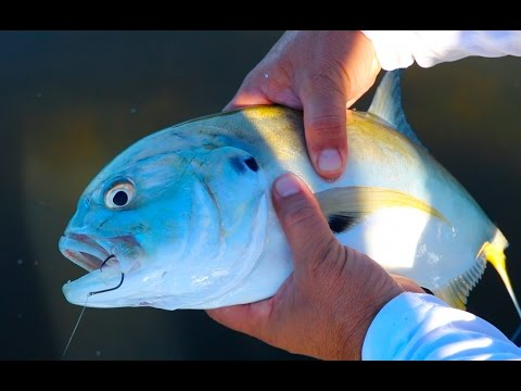 Fishing The Legendary Tampa Bay Flats!!!