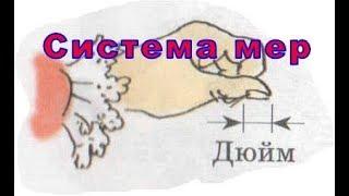 Интересные факты о метрической системе