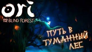 Ori and the Blind Forest - Путь в Туманный Лес (ПРОХОЖДЕНИЕ #6)