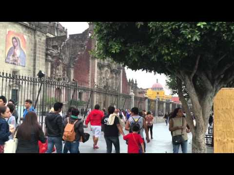 Mexico City: Centro Historico and National Museum of Anthropology