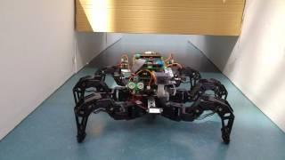 Spider Pig - Autonomous Hexapod Robot (Bachelor Thesis Project, Linköping University)