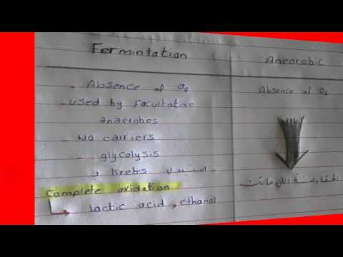 3- Bacterial Growth | Microbiology | Dr.mar3y