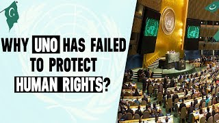Why United Nations Organization Has Failed to Protect Human Rights?
