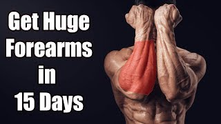 FOREARM Workout | Top 3 Exercises For SIZE & STRENGTH