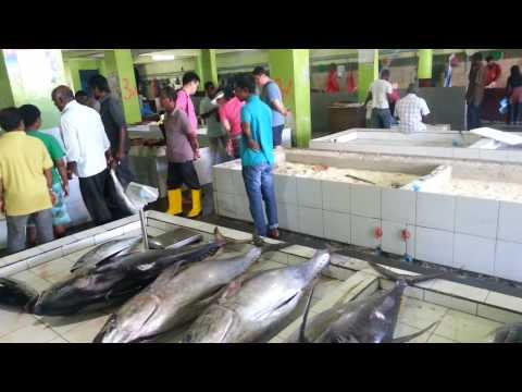 Maldives - Male city - Fish market - Fruit and vegetables market