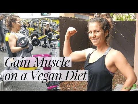 How to Gain Muscle on a Vegan Diet   Vegan Muscle Building Meals & Gym Routine 💪💪💪