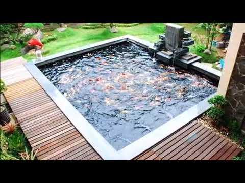 rumah minimalis dengan kolam ikan - youtube