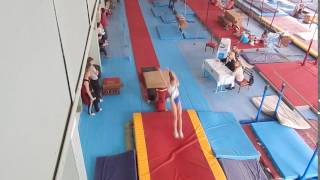 Опорный прыжок спортивная гимнастика первый взрослый разряд