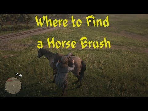 How To Get a Horse Brush and Brush Horse Red Dead Redemption 2