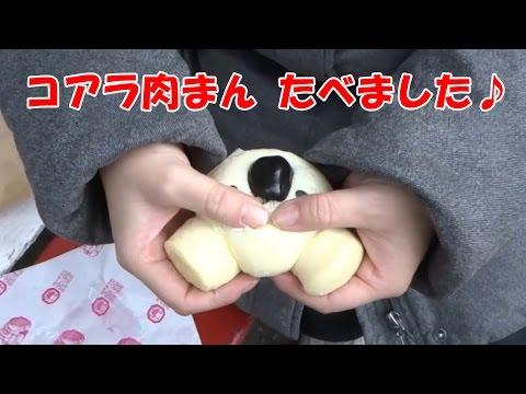 コアラ肉まん 食べました♪ The koala steamed bun which is sold at a zoo.