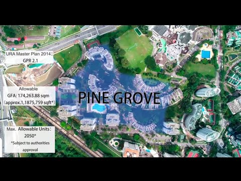 Pine Grove Collective Sale - Singapore Redevelopment En Bloc Land in Holland Cluster near to MRT.