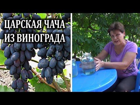 Как называется виноградный