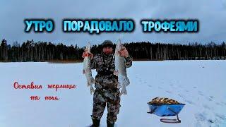УТРО ПОРАДОВАЛО ТРОФЕЯМИ Оставил жерлицы на ночь Удачная рыбалка на озере