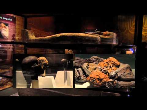 Charlotte Buzz - Discovery Place, Mummies of the World exhibit