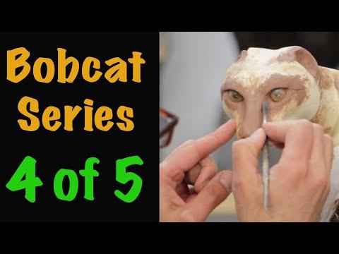Bobcat Taxidermy Series. Part 4. EYES, FACIAL CLAY WORK. Art of Taxidermy.