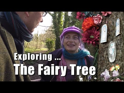 Walks In Sussex: Exploring The Fairy Tree, Lancing, West Sussex