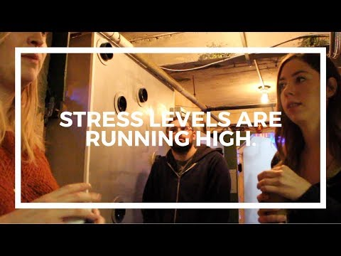 Behind The Keys Episode 009: Stress Levels Are Running High...