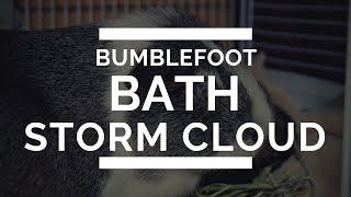 Storm Cloud- Bumble-foot Bath Treatment!