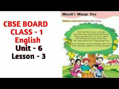 CBSE BOARD | CLASS 1| Murali's Mango Tree 🌲 |Unit - 6| Chapter - 3| Talk With English