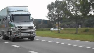Scania Torpédo Bétaillère