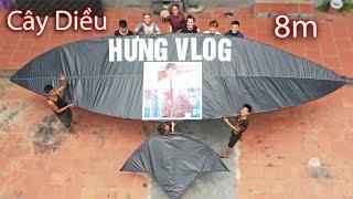 Hưng Vlog - Làm Diều Sáo Siêu To Khổng Lồ 8m To Nhất Xóm
