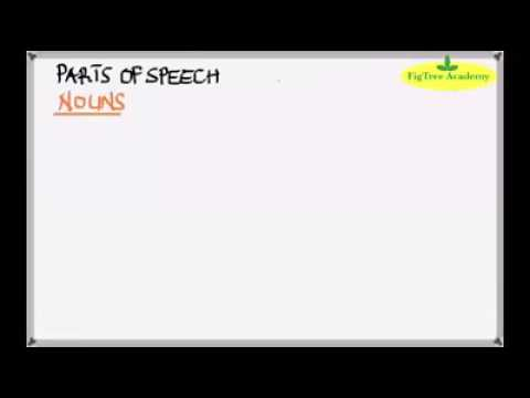 Zimsec English Video Lessons