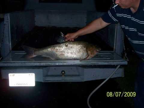 Wabash River Fishing