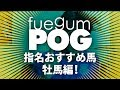 Popular 牡馬 & Horse racing videos