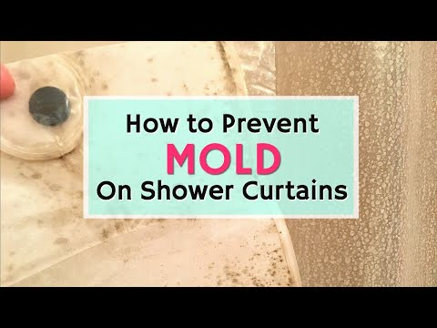 How To Prevent Mold On A Shower Curtain | Cleaning Hacks Video