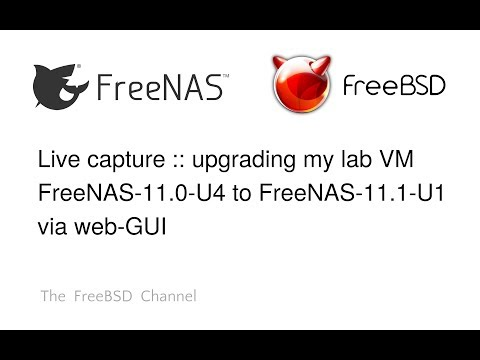 6-live-capture---upgrade-my-lab-vm-freenas-11.0-u4-to-freenas-11.1-u1
