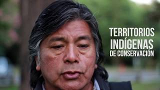 ¿Qué son los Territorios y Áreas Conservadas por Pueblos Indígenas y Comunidades Locales?
