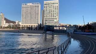 부산 광안리해수욕장