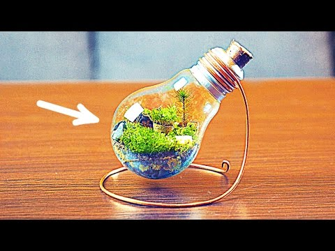 How to make a homemade terrarium