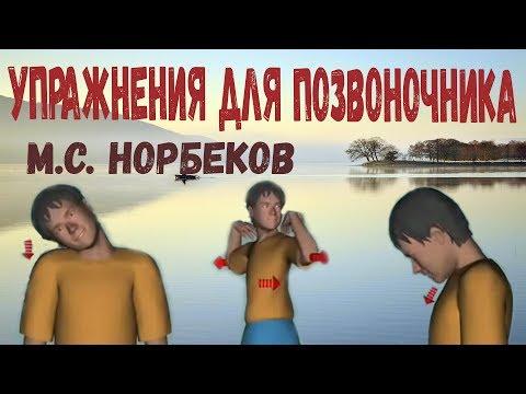 УПРАЖНЕНИЯ ДЛЯ ПОЗВОНОЧНИКА по Норбекову