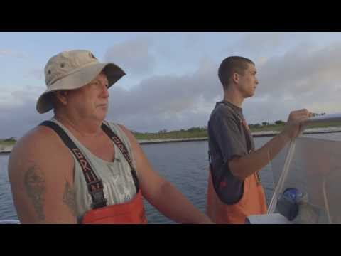 Family Ties - Commercial Fishing On The Outer Banks Of North Carolina