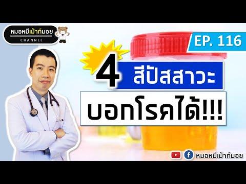 4 สีปัสสาวะบอกโรค โรคไต โรคนิ่ว | เม้าท์กับหมอหมี EP.116