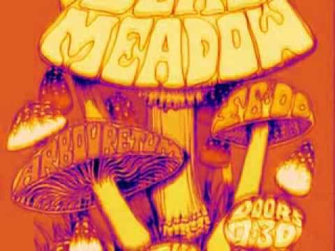 Dead Meadow __ Me and the Devil Blues