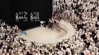 خدوني والله معاكم يا زوار النبي...