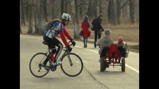 Выбираем двухколесный транспорт: обзор разных видов велосипедов